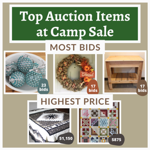Top Auction Items at Camp Sale